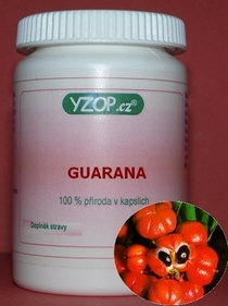 Bylinné kapsle Guarana 50ks