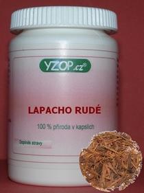 Bylinné kapsle Lapacho rudé 50ks