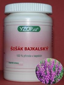 Bylinné kapsle Šišák bajkalský 100ks