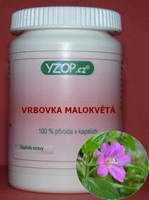 Bylinné kapsle Vrbovka malokvětá 100ks
